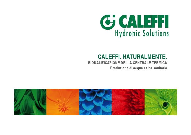 La produzione di acqua calda sanitaria - Collettore idrico sanitario caleffi ...