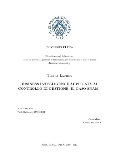 Business intelligence applicata al controllo di gestione: il caso snam
