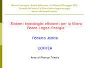 Addensamento energetico dellle biomasse mediante torrefazione