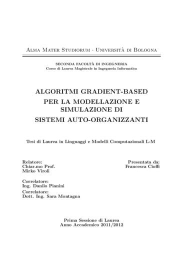 Algoritmi gradient-based per la modellazione e simulazione di sistemi auto-organizzanti