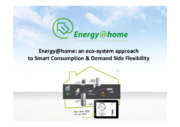 An eco‐system approach to smart consumption & demand side flexibility