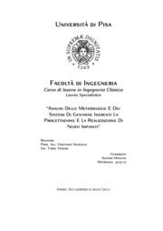 Analisi delle metodologie e dei sistemi di gestione inerenti la