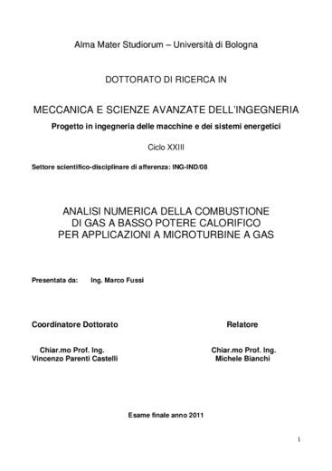 Analisi numerica della combustione di gas a basso potere calorifico