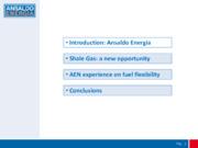 Ansaldo Energia experience on fuel flexibility