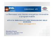 Attività Enea sulle filiere tecnologiche delle biomasse
