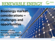 Bioenergy market considerations – challenges and opportunities