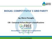 Biogas: competitività e grid parity