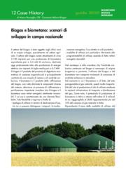 Biogas e biometano: scenari di sviluppo in campo nazionale