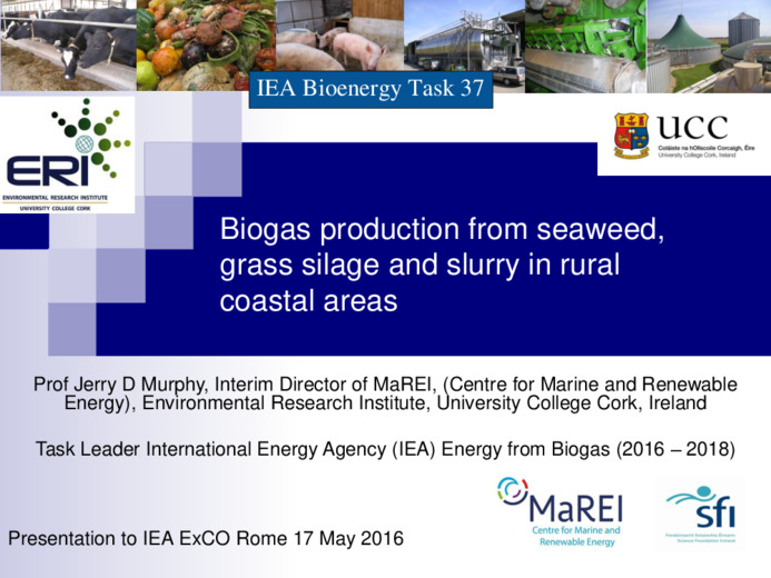 Biogas production from seaweed, grass silage and slurry in rural
