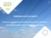 Biomasse e aggregazione di impianti di generazione distribuita: opportunità presenti