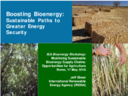 Boosting Bioenergy: sustainable paths to greater energy security