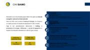 ENERGIA ELETTRICA E TITOLI DI EFFICIENZA ENERGETICA STRUMENTI DI MASSIMIZZAZIONE