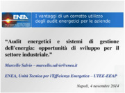 Audit energetico, Diagnosi energetica, Efficienza energetica