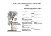 Legno: caratteristiche, proprietà & impiego