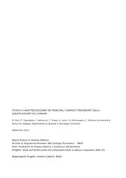 Studio e caratterizzazione dei principali composti provenienti dalla gassificazione del